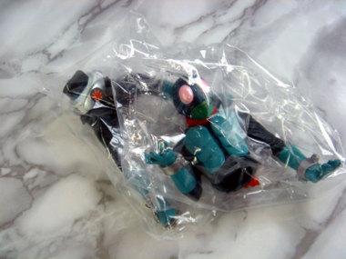 Riderimagefigdsc05676