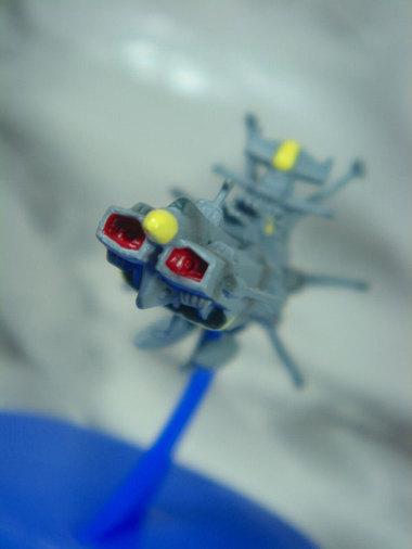 Yamatomekacoledsc05852