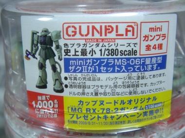 Cupgunpladsc07732