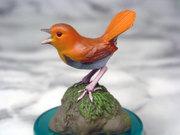 Bird3003