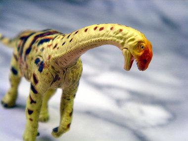 Dino7004